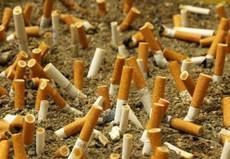 FUMO,SPIAGGIA,SIGARETTA,BAGNATI,OMBRELLONI,PATTINO,MARE,FILTRO,TABACCO,
