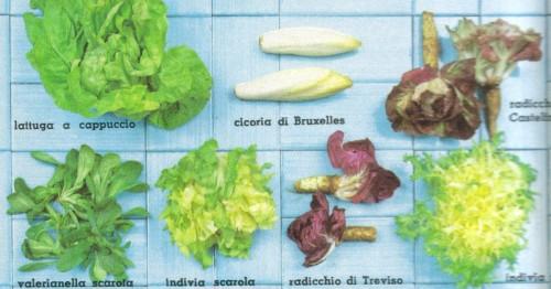 insalata.jpg